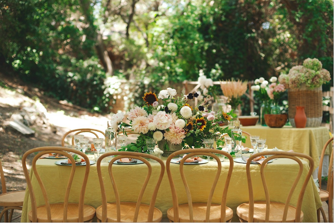 Janni Kayne Garden Party ||  The Havenly Blog