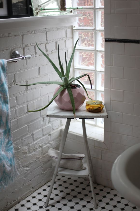 Attirant Orchids Thrive In Humidity, So They Are Perfect For The Bathroom. They  Require Light But Burn Under Direct Sunlight. Look Out For Changes In Leaf  Color To ...
