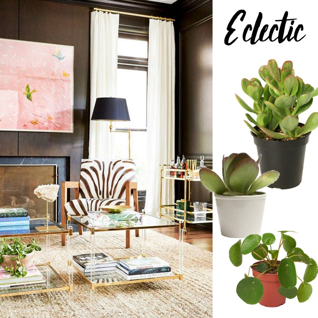 How To Pair Plants and Planters   Havenly Hideaway