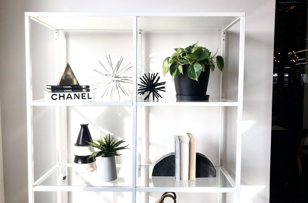 Styled office plants at the Havenly HQ