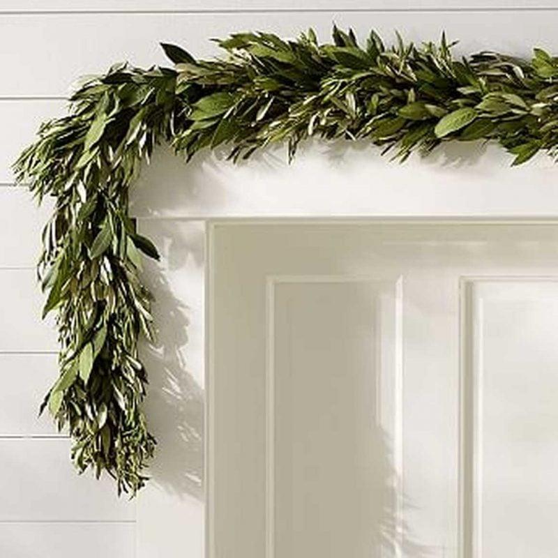 Live Olive Leaf & Myrtle Garland from Pottery Barn
