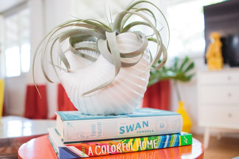 Colorful coffee table books