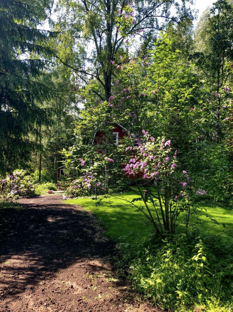 Carolina Grunér Garden